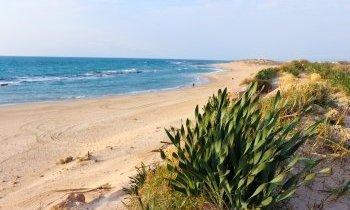 Guide de voyage en Israël