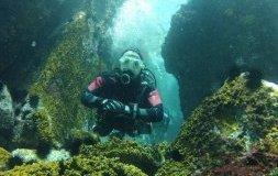 7 meilleurs endroits pour faire de la plongée au Brésil