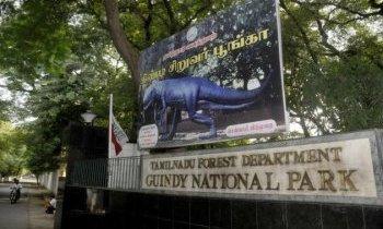 Madras : Parc national de Guindy