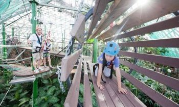 Cairns : Le Wildlife Dome