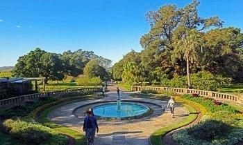 Sydney : Le Royal Botanic Gardens