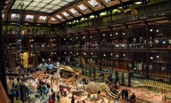 Paris, la grande galerie de l'évolution