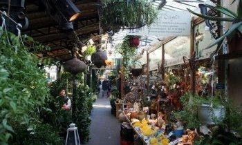 Paris, le marché au fleurs