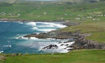 Voyage et séjour en Irlande… attention un mouton !!