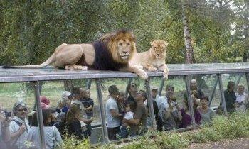 Paris, le parc zoologique