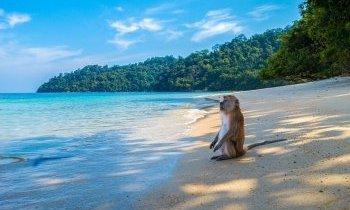 Plus belles plages de Thailande