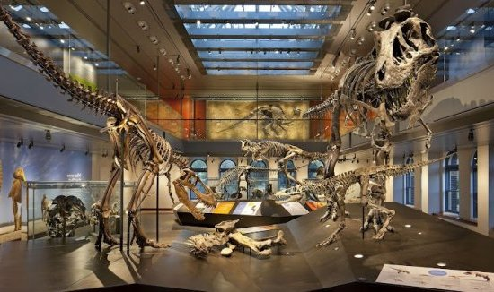 Los Angeles : Natural History Museum of LA county