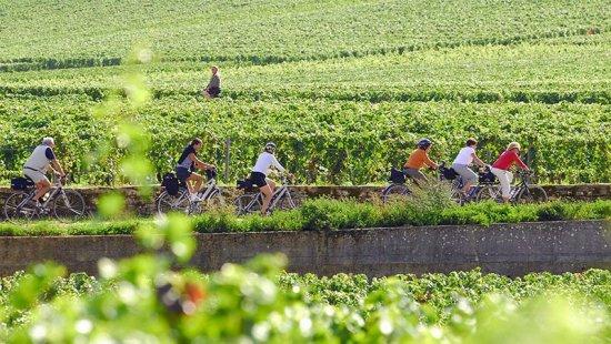 Cyclotourisme en Bourgogne